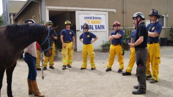 UC Davis Firefighters receive an overview of safe horse handling.